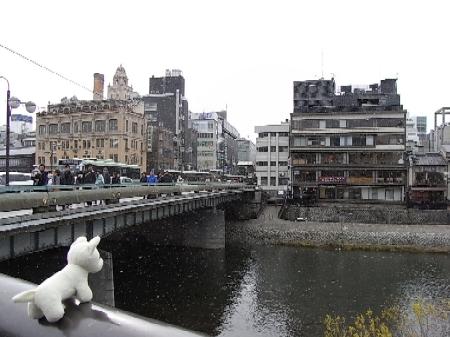 シロの旅日記京都